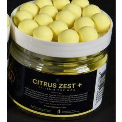 CC Moore Citrus Zest Pop Up bojli 13/14 mm